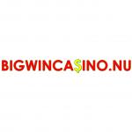 Bigwincasino.nu